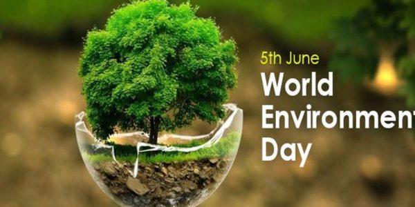 http://www.timebulletin.com/wp-content/uploads/2019/06/World-Environment-day.jpg