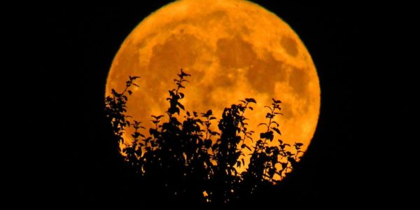 October's Full Moon, the Hunter's Moon,