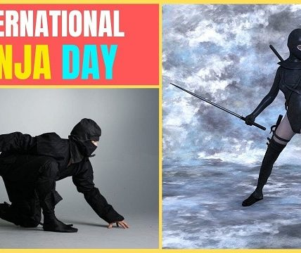 http://www.timebulletin.com/wp-content/uploads/2019/12/International-Ninja-Day-2019.jpg