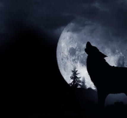 https://timebulletin.com/wp-content/uploads/2020/01/January-Full-Wolf-Moon-2020.jpg