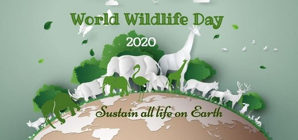 http://www.timebulletin.com/wp-content/uploads/2020/03/world-wildlife-day-2020.jpg