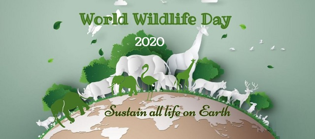 https://timebulletin.com/wp-content/uploads/2020/03/world-wildlife-day-2020.jpg