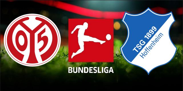 FSV Mainz 05 vs TSG Hoffenheim German Bundesliga 2019 20