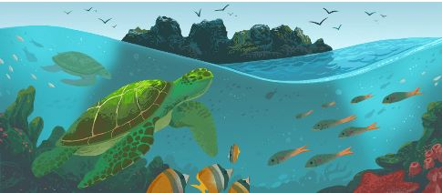 Galápagos Islands 1