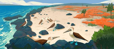 Galápagos Islands 2