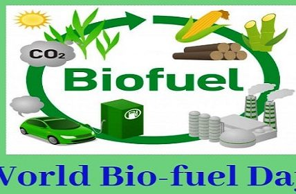 world biofuel day