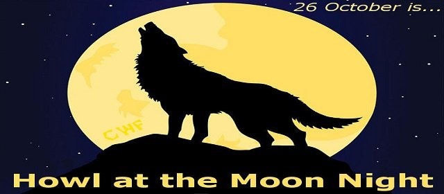 Howl At The Moon Day and Night