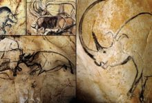 Interesting Facts about Grotte Chauvet Cave UNESCO World Heritage Site