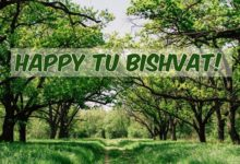 Amazing and Fun Facts about Tu BiShvat