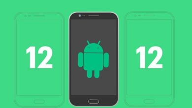 Android 12 Developer Preview Whats new