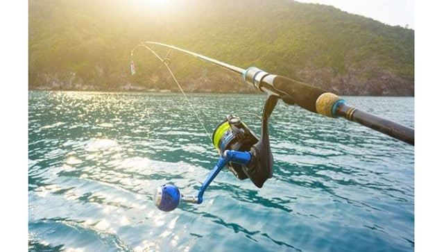 Fishing for the First Time Quickly Become Expert with the Nature Insider
