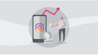 How to choose the perfect Instagram Growth Service