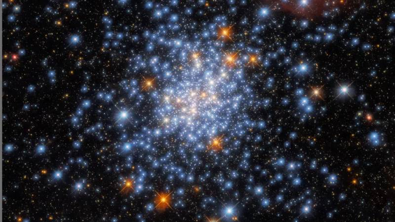 Hubble Space Telescope detects red white and blue stars in the sparkly cluster