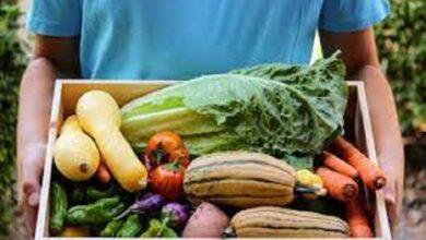 Minot Farmers Market launches a new season local food alternatives