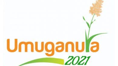 Umuganura Day History and Significance of harvest festival in Rwanda